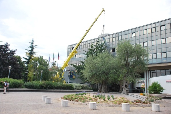 I lavori eseguiti in Municipio