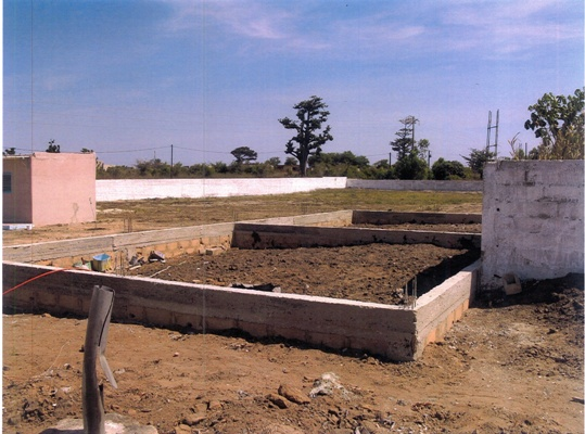 Fondamenta della nuova scuola