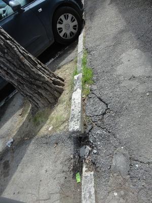 Lo stato attuale dei marciapiedi divelti dalle radici dei pini in via Ferri
