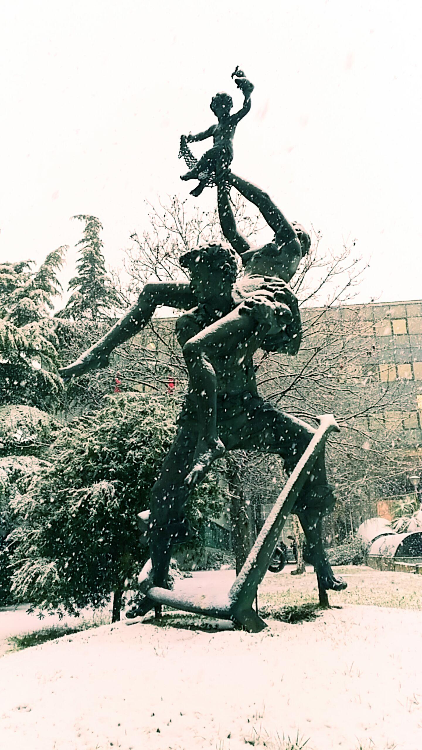 nevicata del 10 gennaio 2017