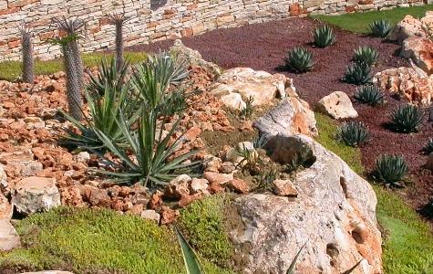 San benedetto del tronto 08 giardino arido - Immagini di aiuole da giardino ...
