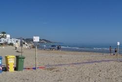 La spiaggia per cani