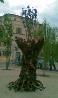 L'opera in piazza Matteotti
