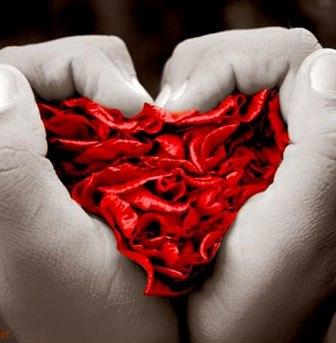 Sabato 11 ottobre sarà la giornata europea della donazione degli organi