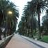 """Pulizia """"speciale"""" per i giardini di viale Pasqualetti"""