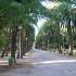 Riqualificazione di viale Pasqualetti: entro il 10 agosto le offerte in Comune