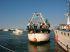 Festa della Madonna della Marina, sabato la processione in mare