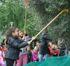 Gli alunni raccolgono le olive in piazza Bambini del Mondo