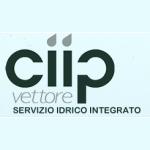 Il logo CIIP spa