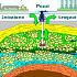 Deposito del gas e terremoto, per il TAR Lazio il problema esiste
